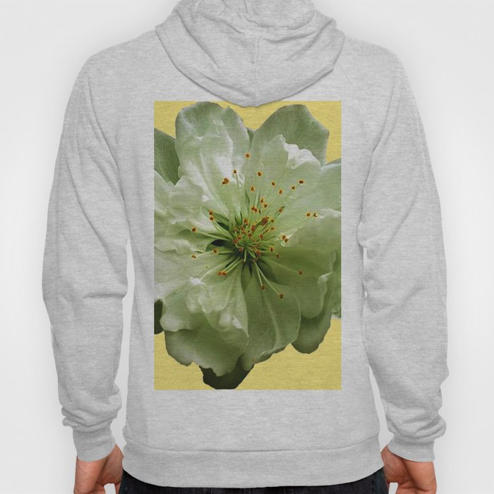 Delicate White Flower Blossom & Cream Color Hoody