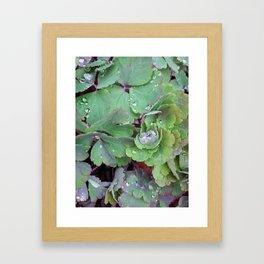 Little Kingdom Framed Art Print