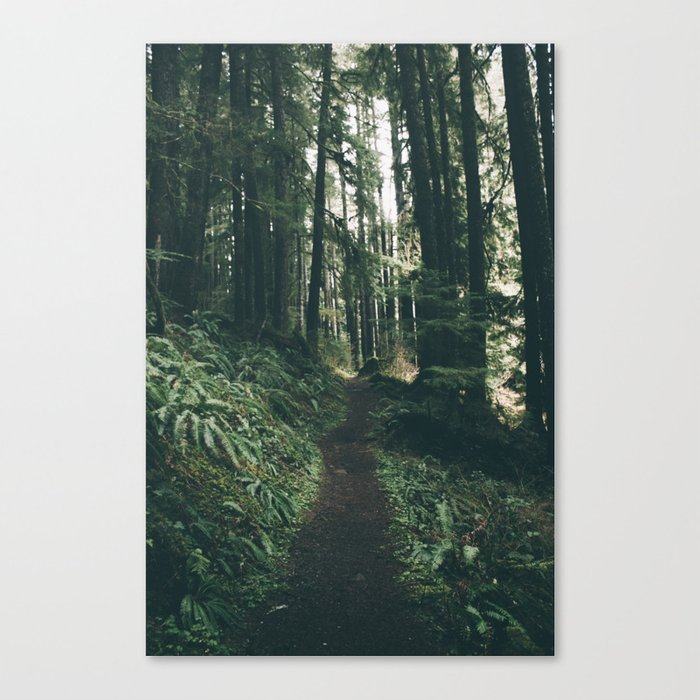 Happy Trails VII Canvas Print
