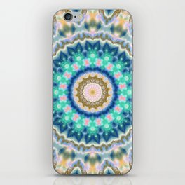 Colorful mandala  2018 2 iPhone Skin