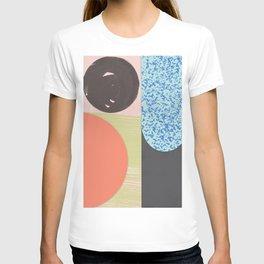 collage #3 .jpg T-shirt