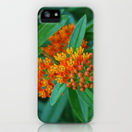 Nothing More, Nothing Less iPhone Case