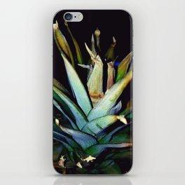 top.of.pine iPhone Skin