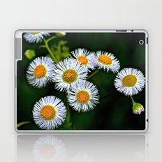 Flowerworks Laptop & iPad Skin
