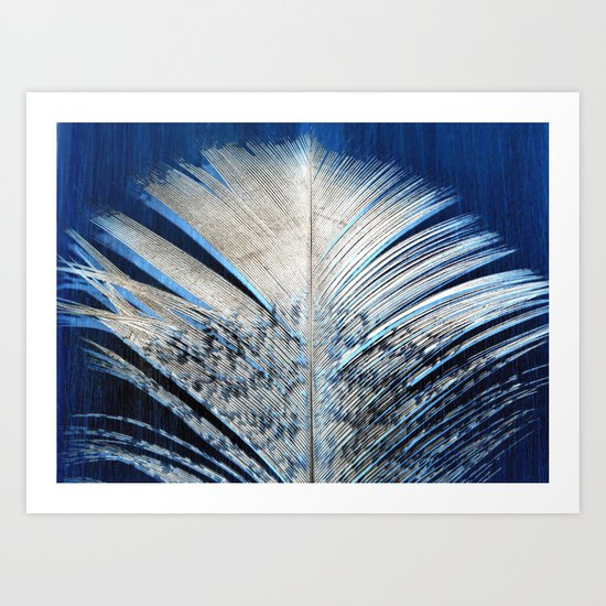 Feather | Feathers | Spiritual | White and Blue Feather | Nature Art Print