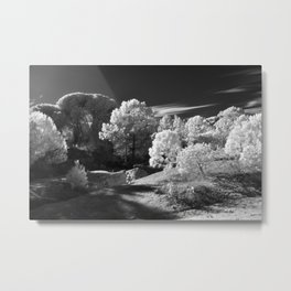 Infrared wood Metal Print
