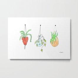 Hanging Planters Metal Print