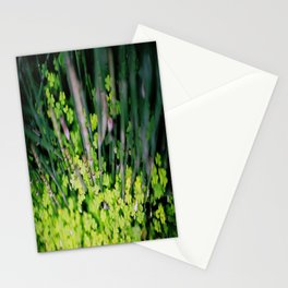 Littler BamBoo Stationery Cards