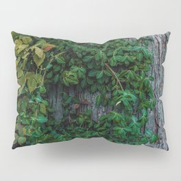 Ivy upon the Tree (Color) Pillow Sham