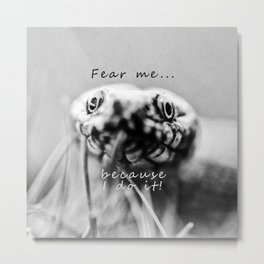 Fear me because I do it Metal Print