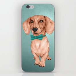 Dachshund, The Wiener Dog iPhone Skin