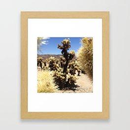 Joshua Tree Cholla Cactus Window #1 Framed Art Print