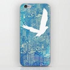 Ecotone (day) iPhone & iPod Skin