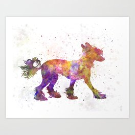 Chinese crested dog 01 in watercolor Art Print