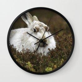mountain hare Wall Clock
