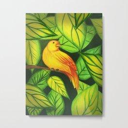 Colorful Tropical Bird Metal Print