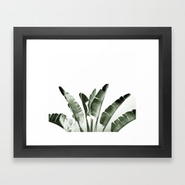Traveler palm Framed Art Print