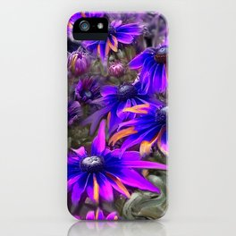 A Rainbow of Daisies Fine Art Poster and Cards iPhone Case