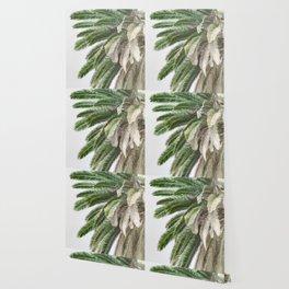 Nature photography tropical vintage palm leaf I Wallpaper