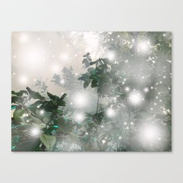 magic mist Canvas Print