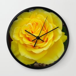 Head On View Of A Yellow Rose With Garden Background Wall Clock