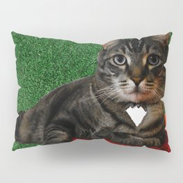 King of the... house? Pillow Sham