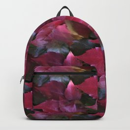 fall is coming -16- Backpack
