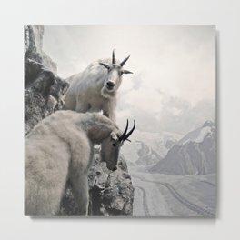 Hi, we are the mountain goats Metal Print