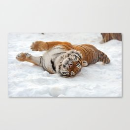 Lovely Gorgeous Beast Writhing On Ice UHD Canvas Print