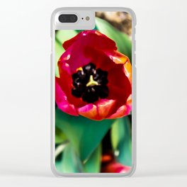 Vibrant Tulips Clear iPhone Case