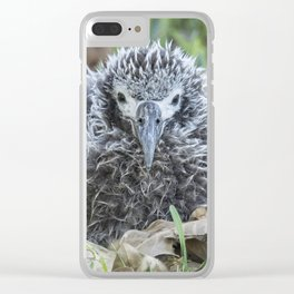 Laysan Albatross Chick, No. 1 Clear iPhone Case