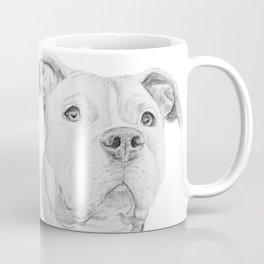 A Pit Bull :: Misunderstood Coffee Mug