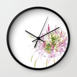 Cleome spinosa-flower watercolor Wall Clock