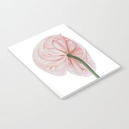 Pink Anthurium Notebook