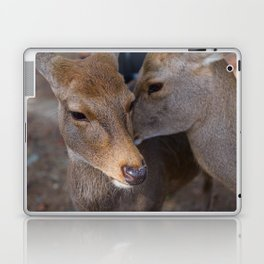 Deer Secrets Laptop & iPad Skin