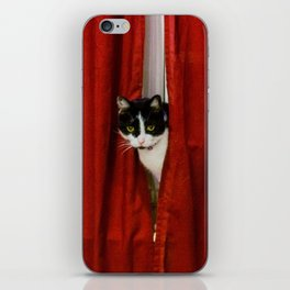 Peek-A-Boo Tuxedo Kitty iPhone Skin