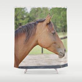 Take a Chance Shower Curtain
