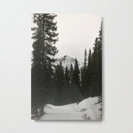 moutains Metal Print
