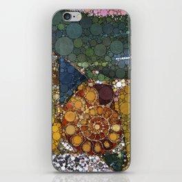Granite Agate Quartz Snail Fossil iPhone Skin