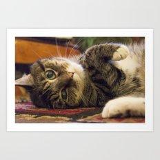 Catnip Cat Art Print