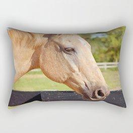 Sweetheart Bandit Rectangular Pillow