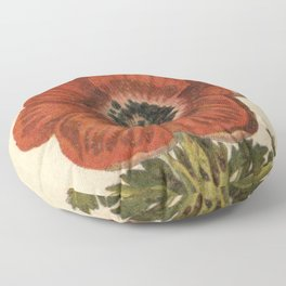 1800s Encyclopedia Lithograph of Anemone Flower Floor Pillow