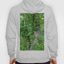Quietly Quirky Hoody