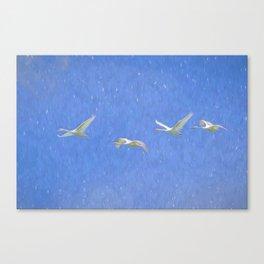 Swans Flying Art Canvas Print
