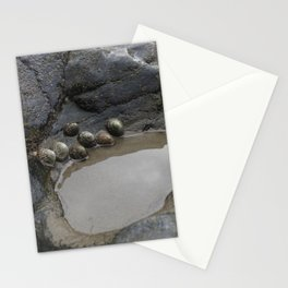 Limpets on the Edge of a Rockpool Stationery Cards