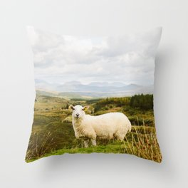 A sheep in the Irish hills Throw Pillow