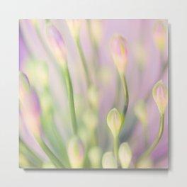 Lavender Nile Metal Print