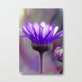 purple flower edit Metal Print