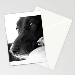 Mad Dog Longs for the Outdoors II Stationery Cards