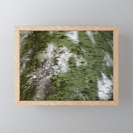 Birch Bark Pattern Green and White Wood Pattern Bring the Outdoors In Framed Mini Art Print